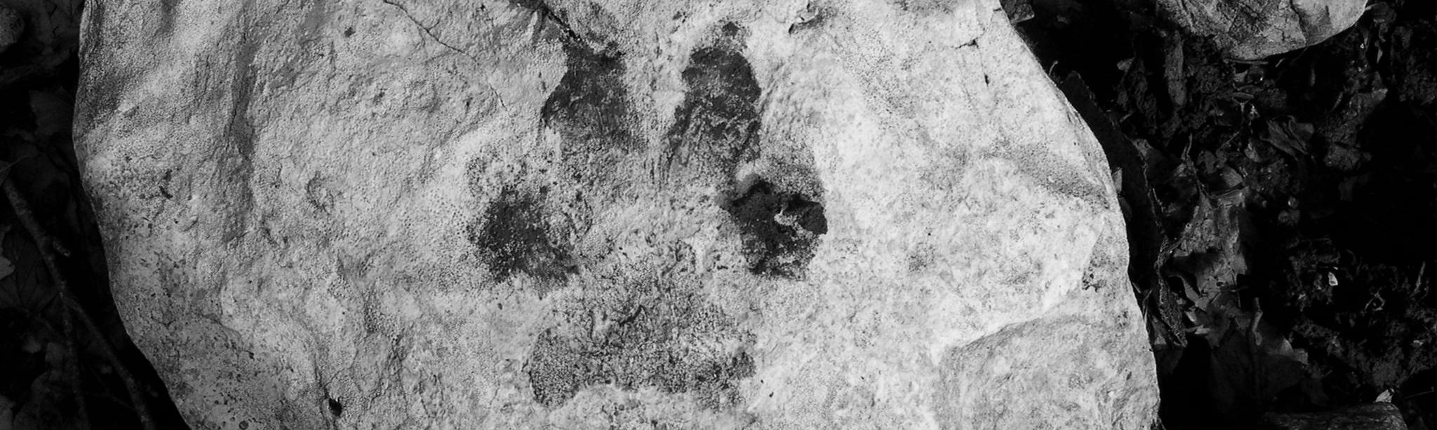 Orma su roccia_rit_BN